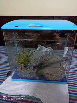 Sobo molded glass aquarium