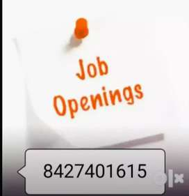 Financial freedom home based job start at home