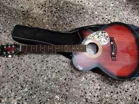 Hobner Acoustic Guitar