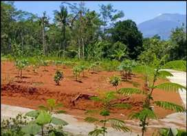 Tanah Gunung Pati 140 meter  semarang selatan