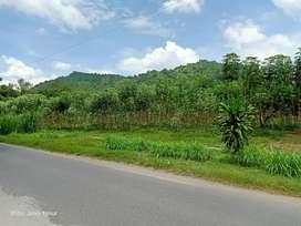 Tanah kosong cocok untuk tempat wisata, karena background gunung