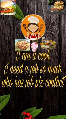 I am cook I need  a job so much