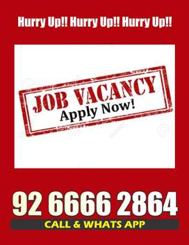 Easy Data Entry Work Online Jobs, Earn 23000/- Per Assignment