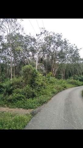 Di jual tanah seluas 1 hektar di jl.daeng suganda bitahan polres