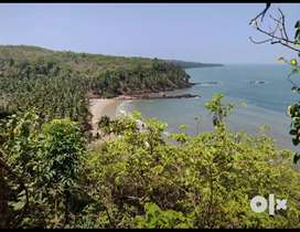 1000sqm Seaview NA plot for Sale at Canaguinim Betul, Nr ongc