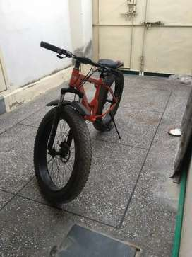 Fat bike IMPORTED