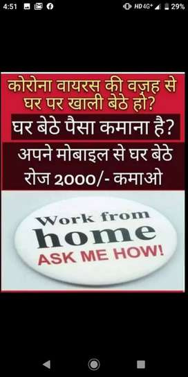 work from home e-commerce based online work