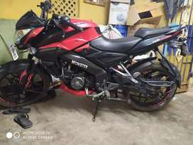 pulsar ns 160 red color