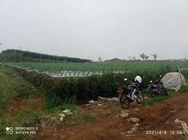 Tanah paralayang kemuning