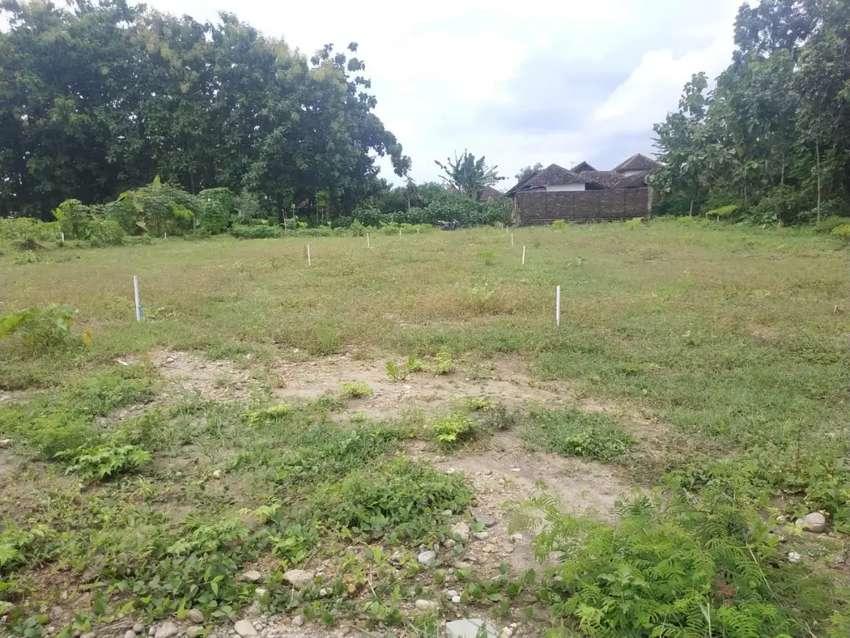 Tanah siap bangun harga 60 jt shm