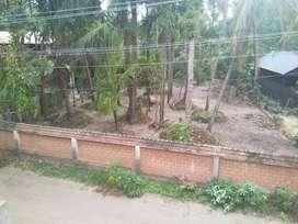 15 cent Rectangular plot for sale in Sankaramangalam, Chavara.