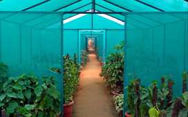 GreenHouse Sun Shade