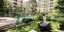 Lodha Upper Thane - 1 BHK 550 Sq. Ft. Apartment