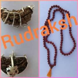 100% Pure 1 Mukhi RUDRAKSHA & Rudraksha Mala with Lab Certified..54.lk