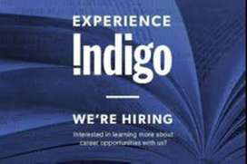 JOB AIRPORT INDIG0 @ AIRLINES 10th & 12th , Graduate Pass jobs in Airl