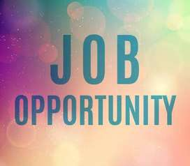 part time freelance  onlinejob opportunity