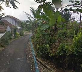 Tanah Kebun 1400 m2  Arah Objek Wisata di Cipancar Subang Dijual Murah