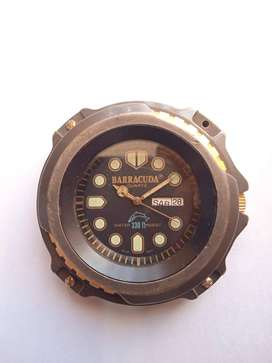 BARRACUDA (DAIL WATCH)