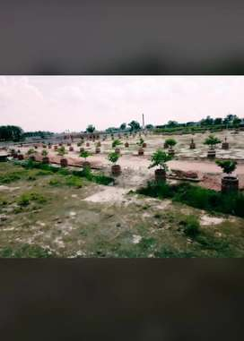 Naubasta gallmandi near hamirpur highway pe plot le