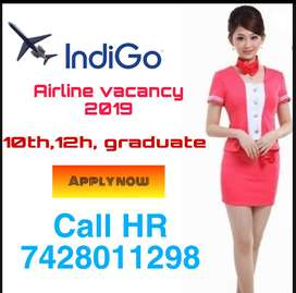 Indigo Airlines Hiring for staff for fresher nd experiences candidate