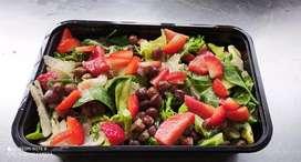 Salad pizza sandwich and juicemaker
