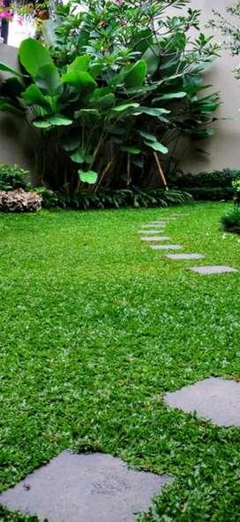 Panggilan potong rumput balikpapan
