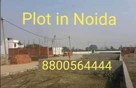 प्लॉट & प्लॉट आवासीय प्रॉपर्टी नोएडा 140 पक्की रजिस्ट्री मोटेशन