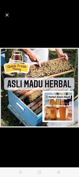 Asli Madu Herbal Madu Kampung Asli Herbal Alami Abadi 1kg