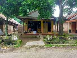 Rumah di mojosari-trawas sederhana murah sejuk dan nyaman banget