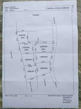 Kadavoor(vannapuram- moovatupuzha root)