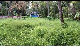 26 cent road side plot (sale/rent)at Thamarapilly junction, Thrissur