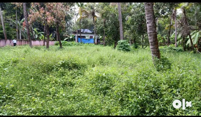 26 cent road side plot (sale/rent)at Thamarapilly junction, Thrissur 0