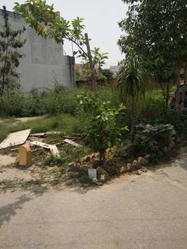 jagriti vihar meerut,282 sq yard south-west facing residential plot ..