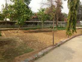 Vatika Green Farm House Sale In Sohna Faridabad Road