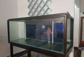 Aquarium laut 180x70x70 plus sump filter