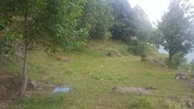 30 marla level land for sale in muree near expressway