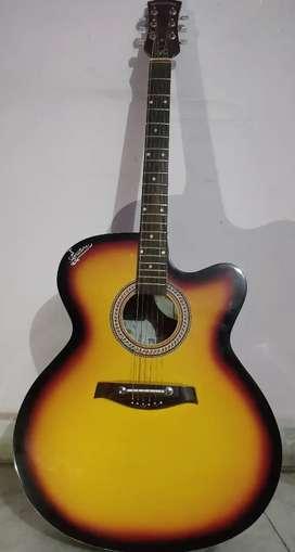 Signature guitar ( made in India manufared in india)