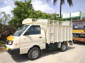 2020 Bs6 ashok Leyland dost for sale
