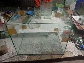 Aquarium, Soliter, akuarium