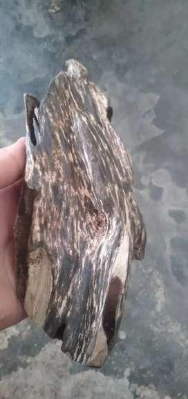 Jual kayu gaharu