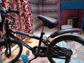 Tangho cycle