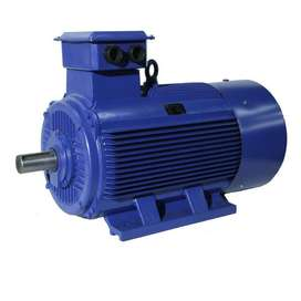 Single Three Phase Electric Motors