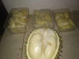 Durian baturaja bandar lampung