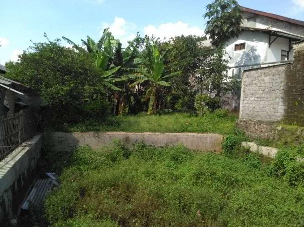 investasi tanah luas di ciburuy