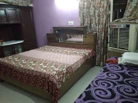 Pg for GIRLS only in Sector 28 d Chandigarh