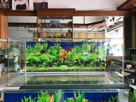 Di jual aquarium baru 100x45x40 background