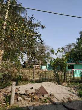 A roadside 2nd plot for sale between Tezpur and Biswanath Chariali