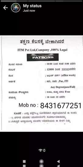 IT COMPANY PVT LTD