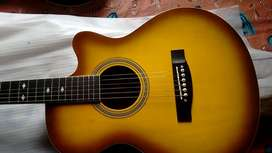 Hertz accoustic Guitar