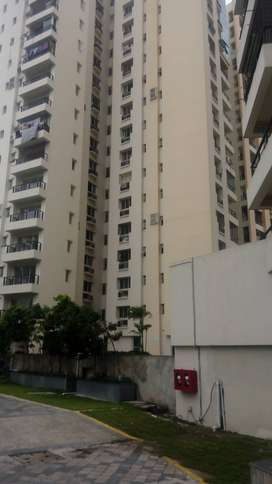 vip road alcove gloria 1950 sq ft 4 bhk flat for sale
